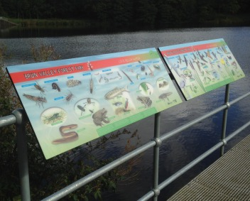 • Brun Valley Forest Park wildlife panels