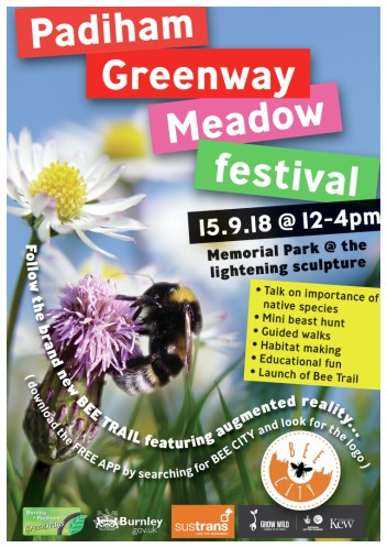 • Padiham Greenway Meadow Festival poster